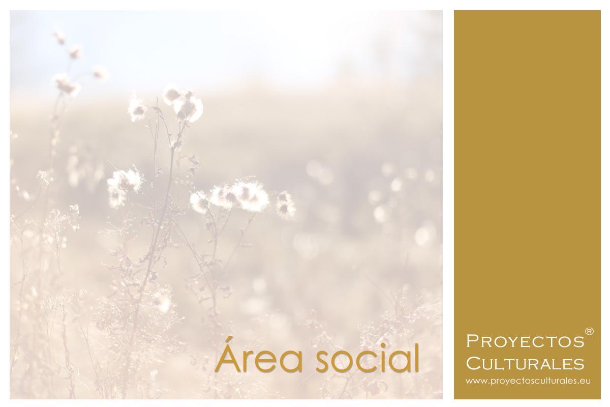 Área social | Proyectos Culturales